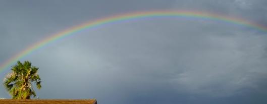 The rainbow... the promise